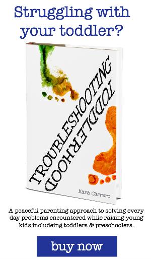 1 troubleshooting toddlerhood book