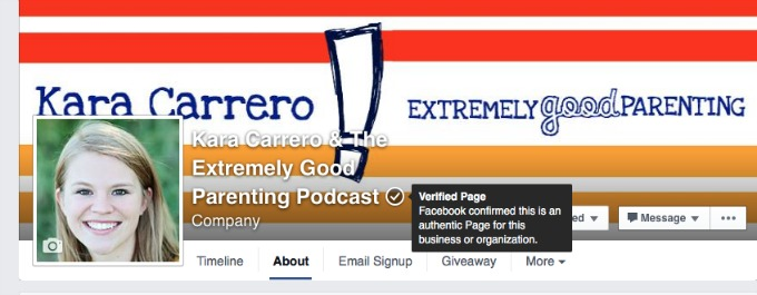 verified page owner on Facebook