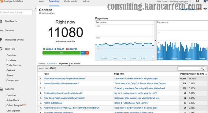 11000 real time page views google analytics